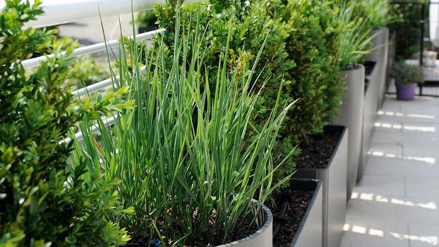 Bont Gartenbau – Bewässerung