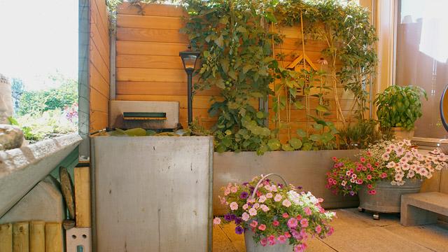 Bont Gartenbau –Sichtschutz mit Brunnen